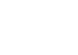 Bull City logo